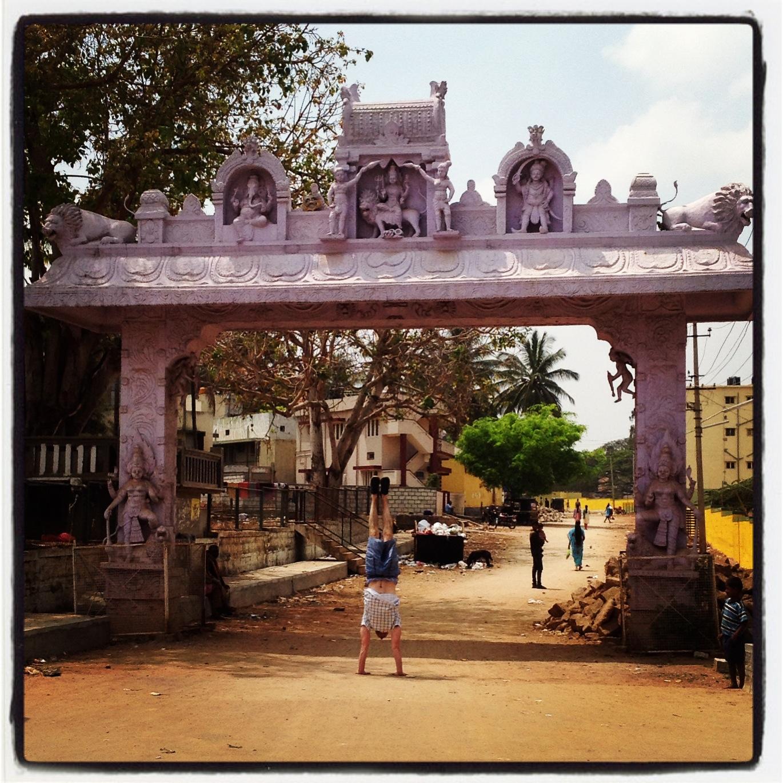 Matt Ryan by a temple in Mysore busting Adho Mukha Vrksasana